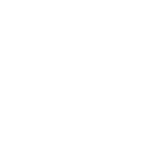 Lokaal Belang Logo